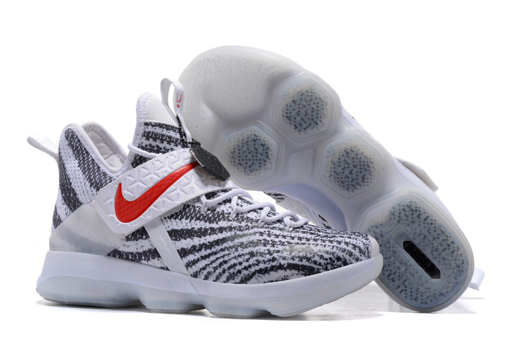 Nike LeBron James 14 Zebra Pattern Shoes