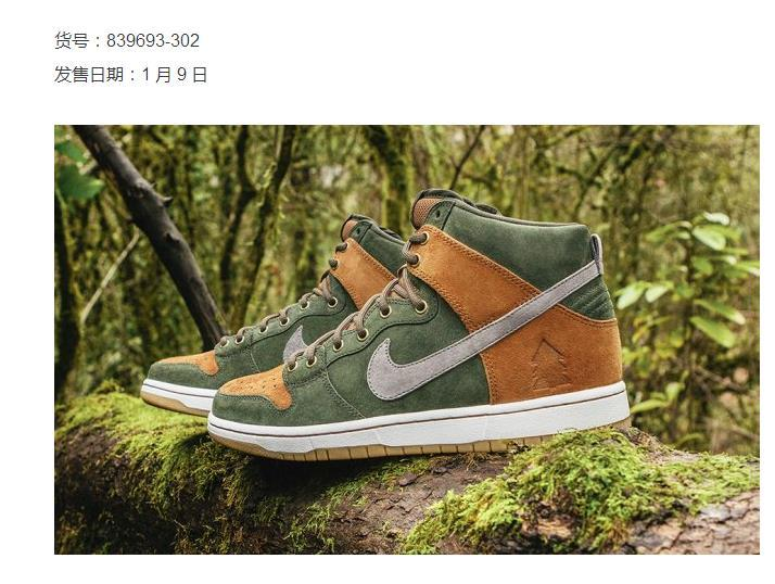 Nike SB Dunk High Premium Homegrown Forest Shoes